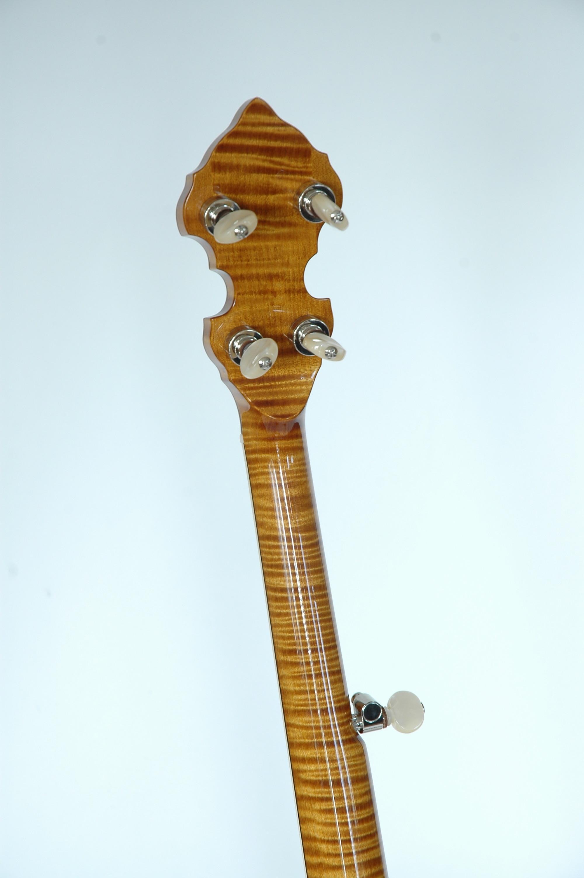 Omega Banjo Back Of PH